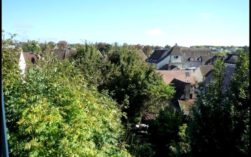 DUPLEX de caractère dans quartier historique de Chartres